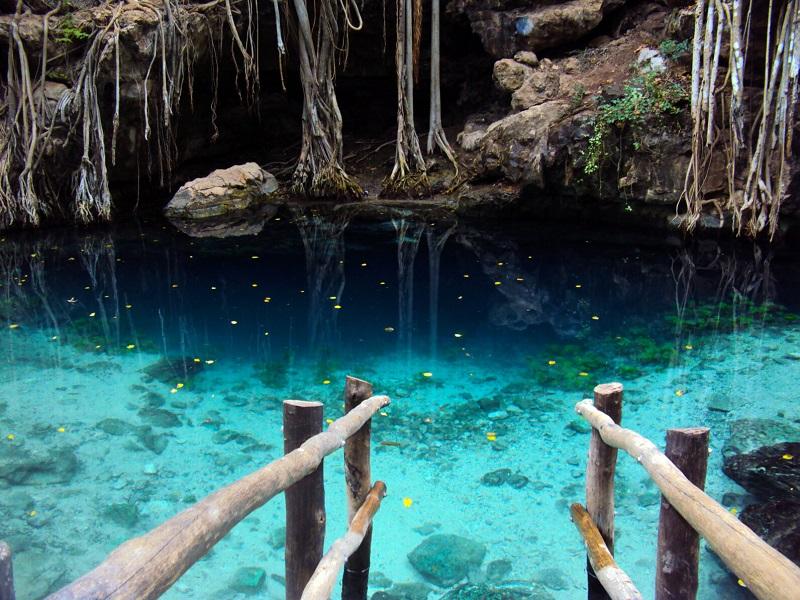 Cenote beauty in Mexico