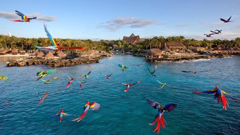 Cancun's natural beauty