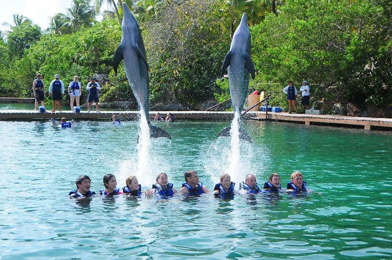 Swim with dolphins at Xel-Há
