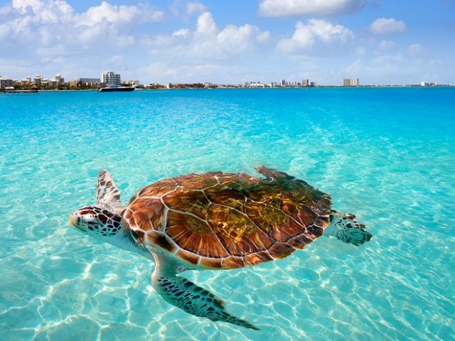 Cancun in September